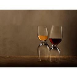 Pahar vin alb si vin rosu, 2 in 1, Nude, sticla innobilata